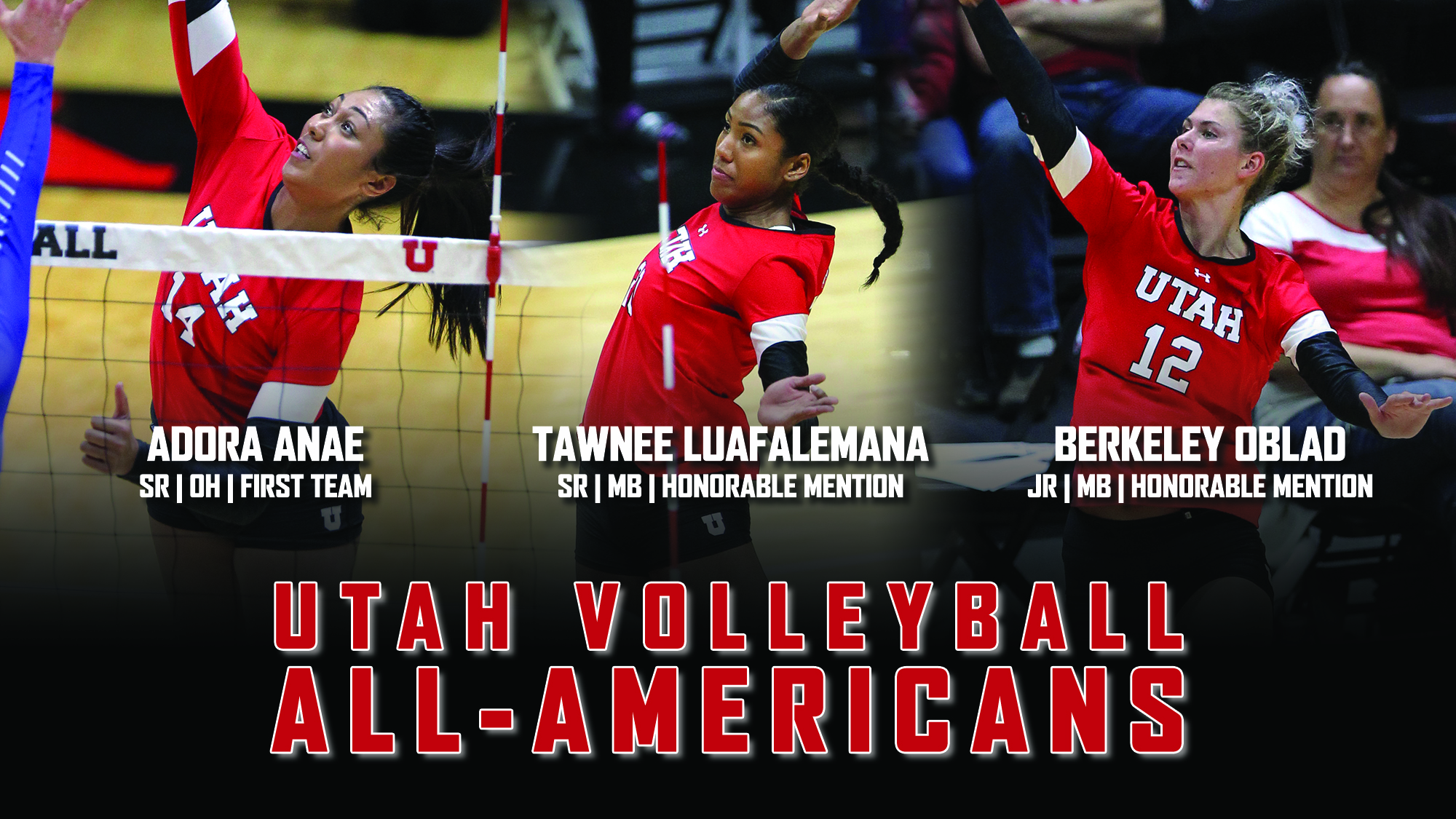 2017_utah_volleyball_all_americans